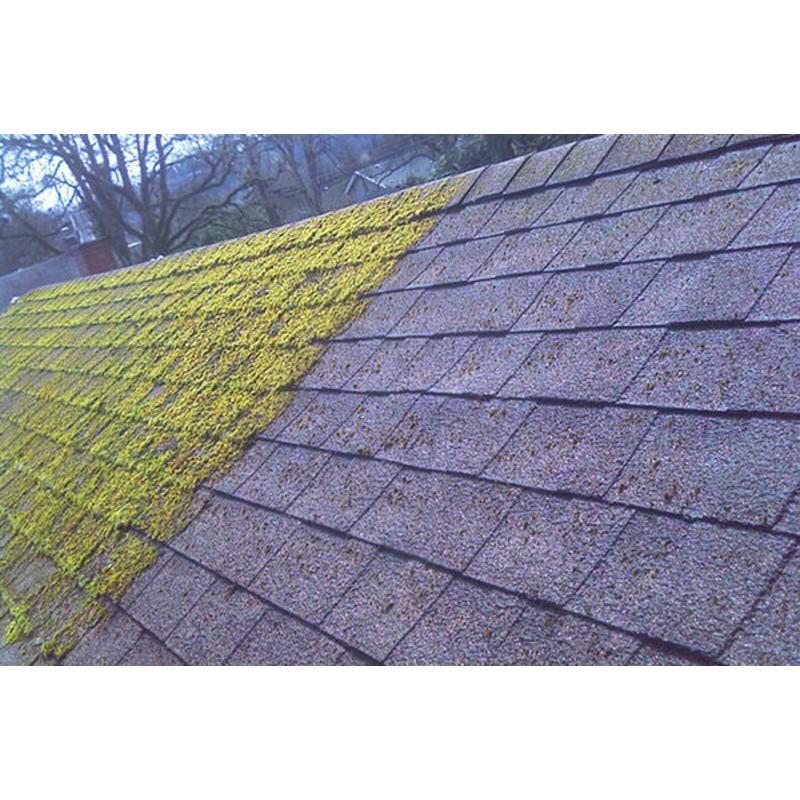 Best Moss Killer Roof Moss Remover Tarmac Moss Killer