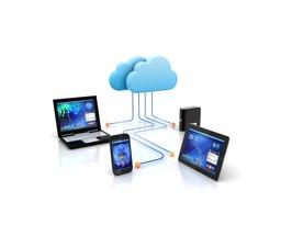 Website Hosting & Maintenance (1 Year)