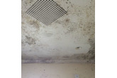Mould & Mildew Remover - 500ml - Keeps tiles & grouting free from mould & mildew growth.